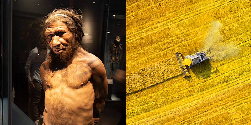 From cavemen's campfires to transforming agricultural waste into valuable products, biomass has remained a constant throughout the history of human energy production.