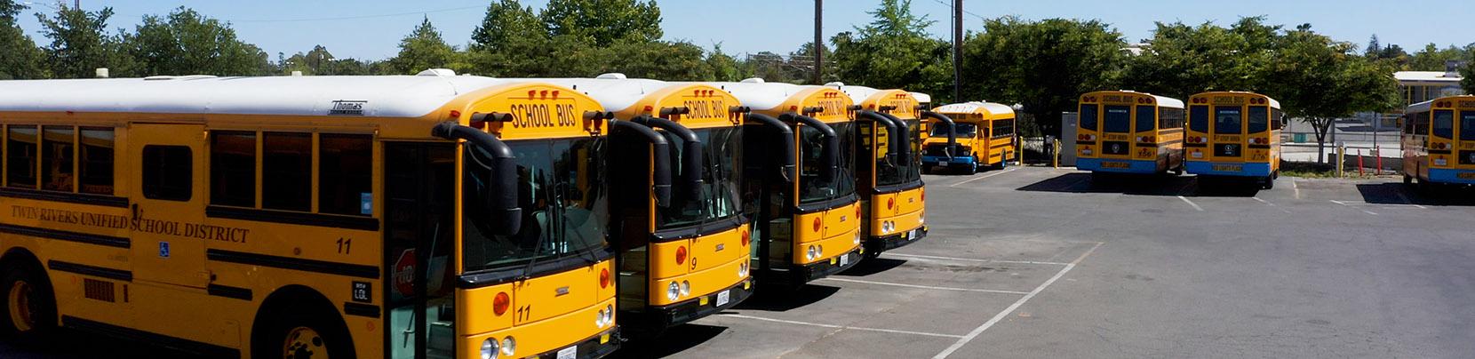schcool buses