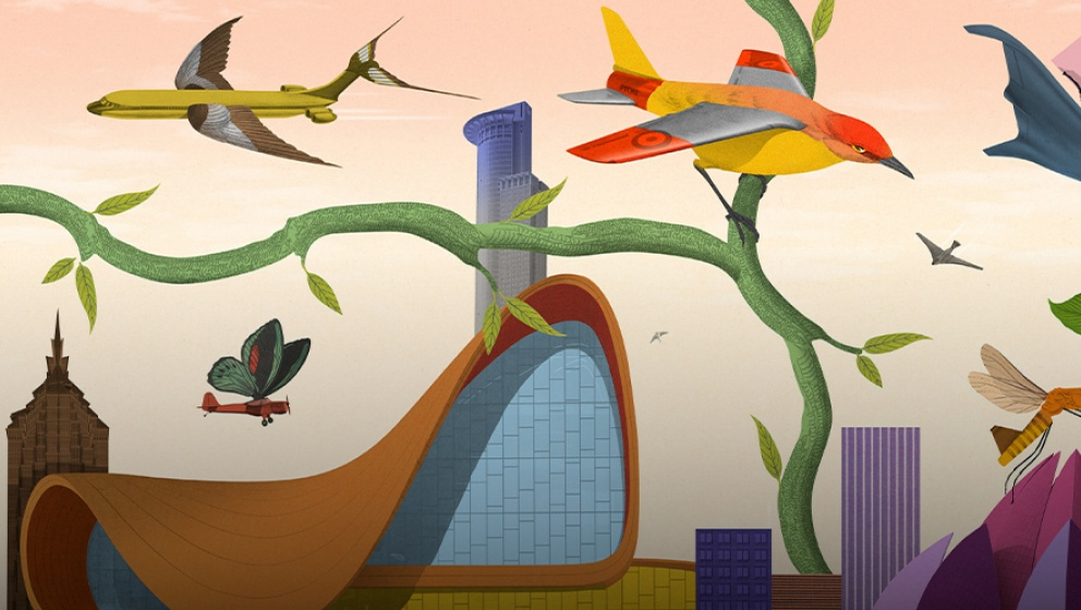 The biggest challenge for aviation in the century ahead is sustainability.